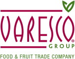 logo varesco group