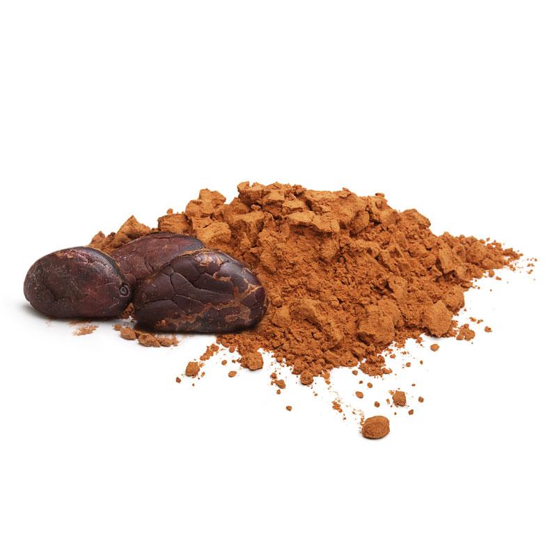 polvere di cacao naturale